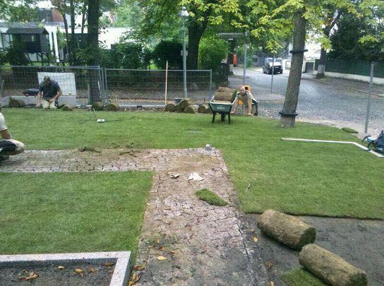 Garten Landschaftsbau Rollrasen verlegen und Hecke