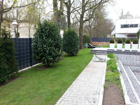 Garten Landschaftsbau Rollrasen verlegen